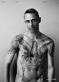 Swan Tattoo | Source: Sang Bleu III/IV